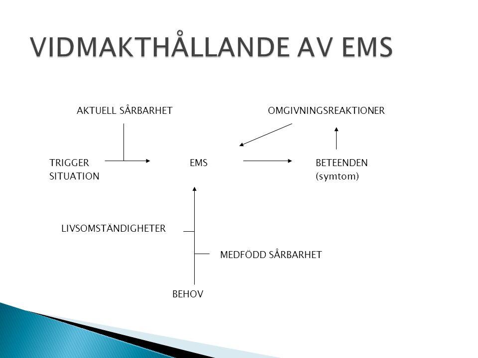 VIDMAKTHÅLLANDE AV EMS