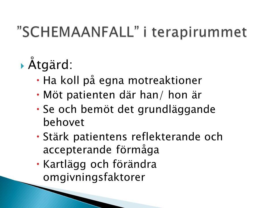 SCHEMAANFALL i terapirummet
