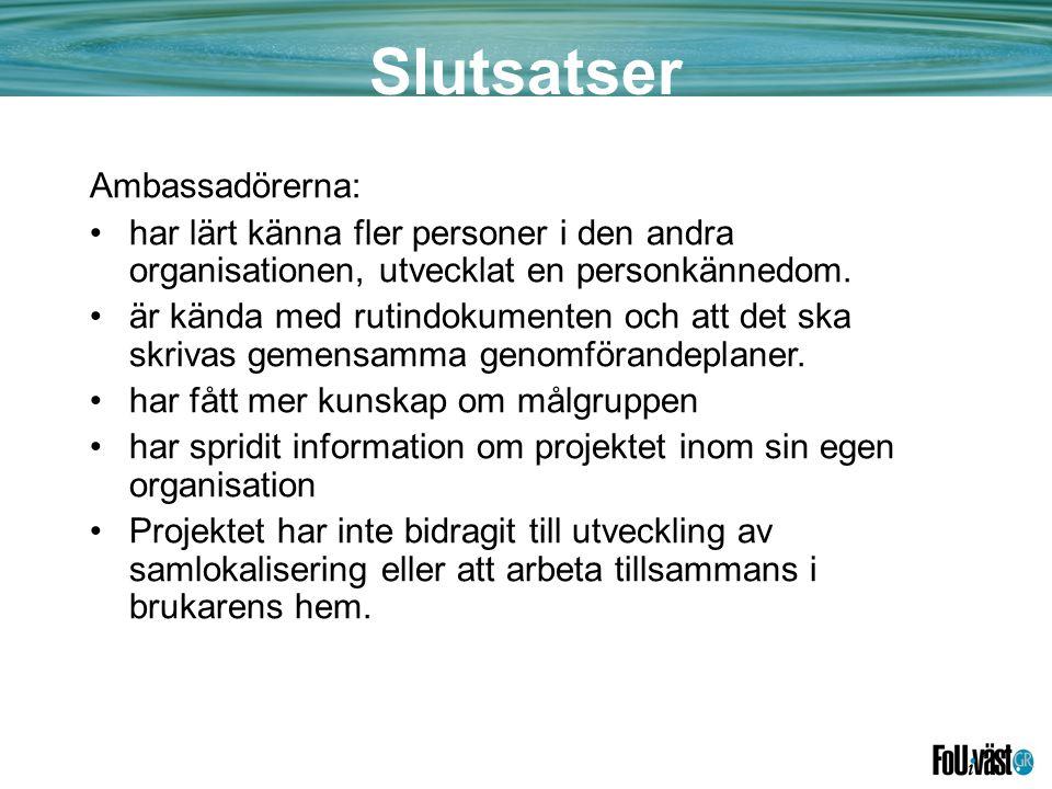 Slutsatser Ambassadörerna:
