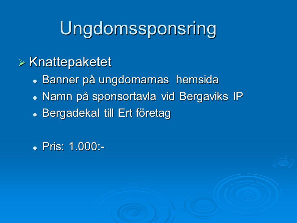 Ungdomssponsring Knattepaketet Banner på ungdomarnas hemsida