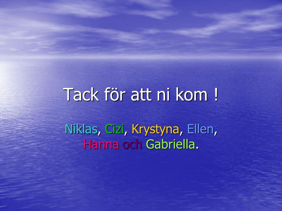 Niklas, Cizi, Krystyna, Ellen, Hanna och Gabriella.