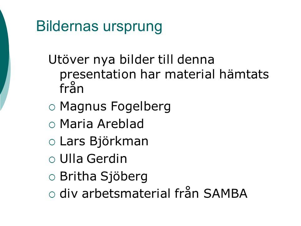 Bildernas ursprung Utöver nya bilder till denna presentation har material hämtats från. Magnus Fogelberg.