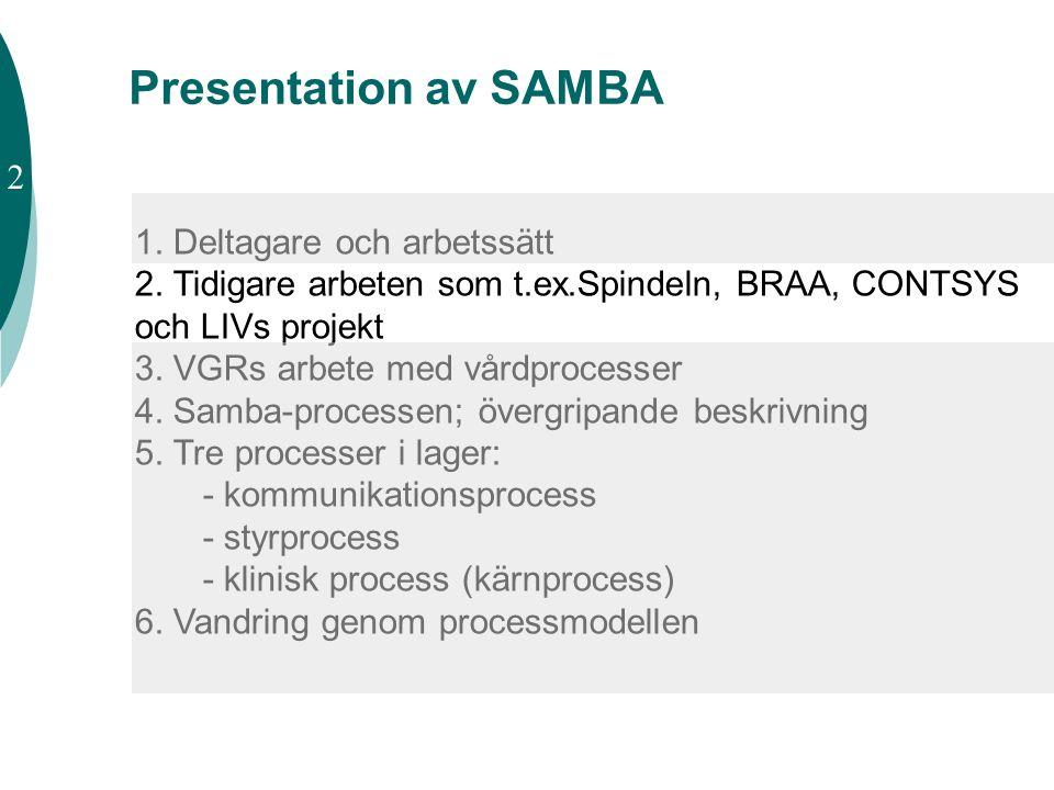 Presentation av SAMBA 2 1. Deltagare och arbetssätt