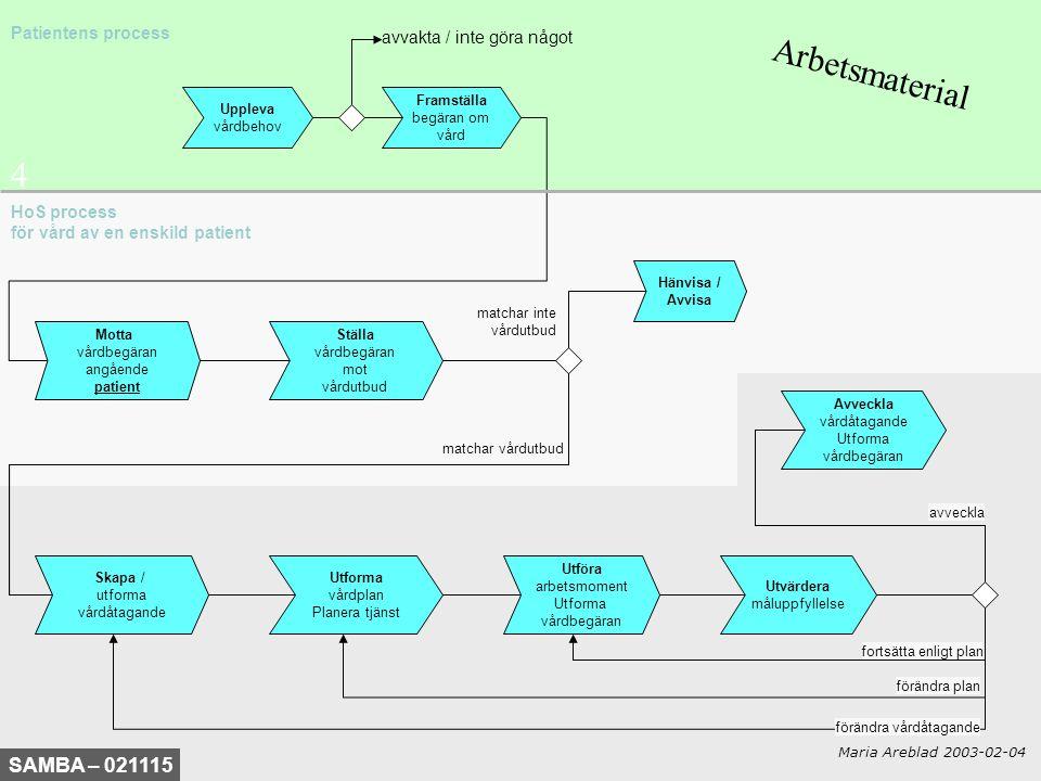 Arbetsmaterial 4 SAMBA – 021115 Patientens process