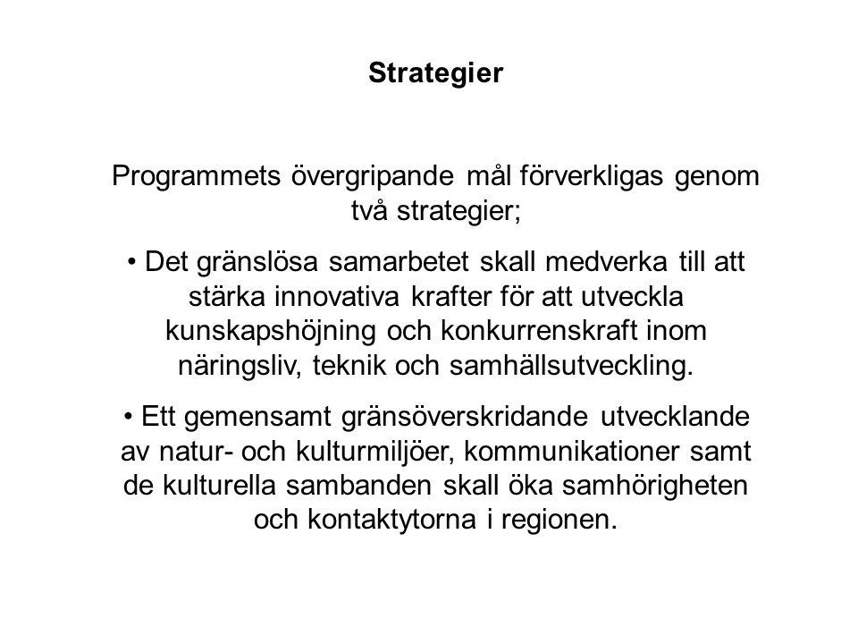 Programmets övergripande mål förverkligas genom två strategier;