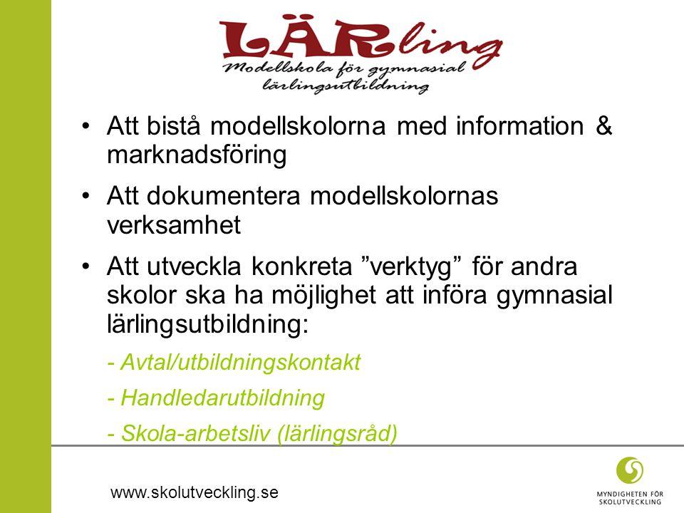 Att bistå modellskolorna med information & marknadsföring