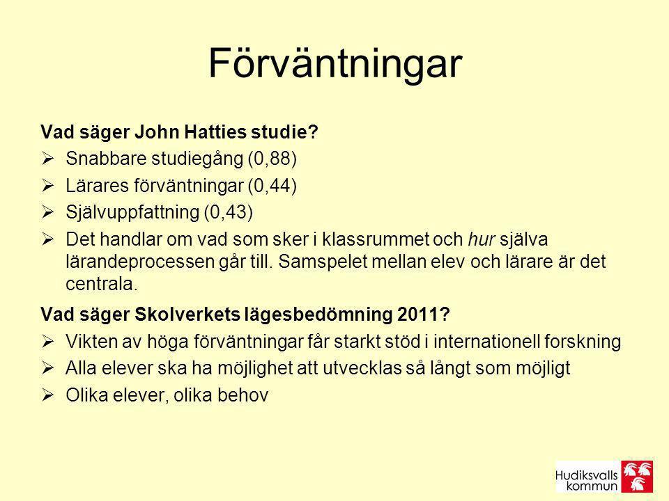 Förväntningar Vad säger John Hatties studie