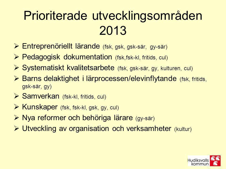 Prioriterade utvecklingsområden 2013