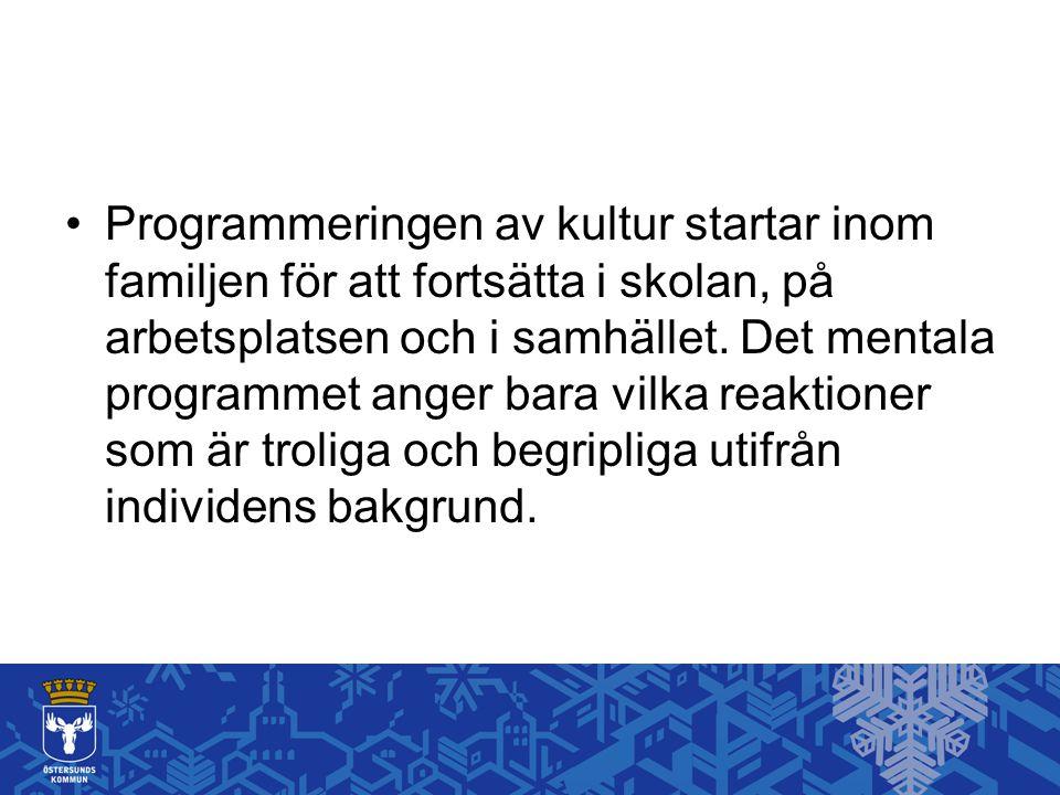 Programmeringen av kultur startar inom familjen för att fortsätta i skolan, på arbetsplatsen och i samhället.