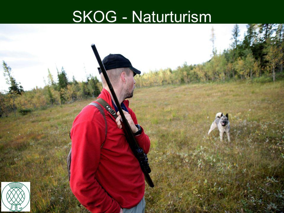 SKOG - Naturturism 10