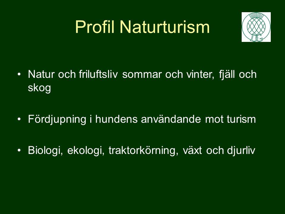 Profil Naturturism Natur och friluftsliv sommar och vinter, fjäll och skog. Fördjupning i hundens användande mot turism.