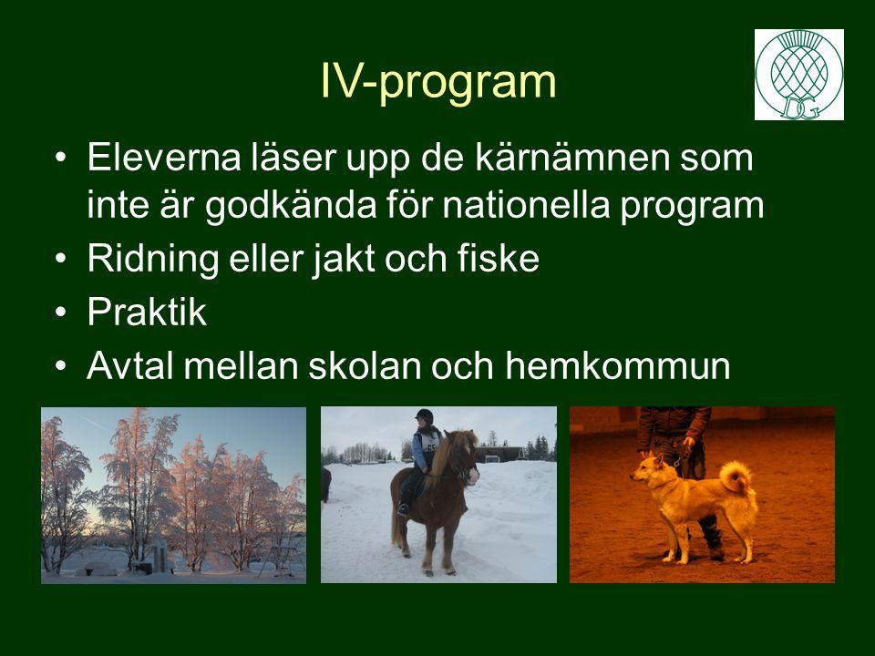IV-program Eleverna läser upp de kärnämnen som inte är godkända för nationella program. Ridning eller jakt och fiske.