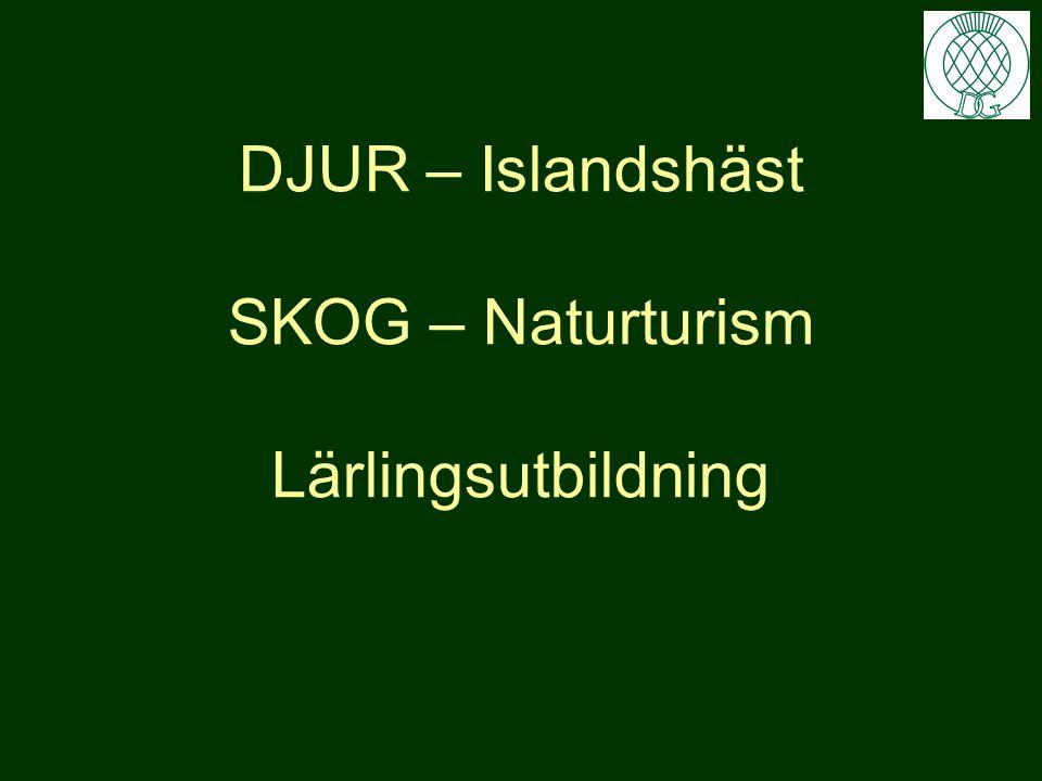 DJUR – Islandshäst SKOG – Naturturism Lärlingsutbildning