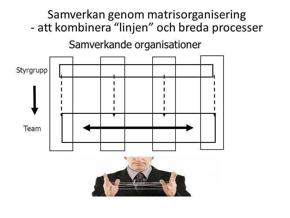 Samverkan genom matrisorganisering