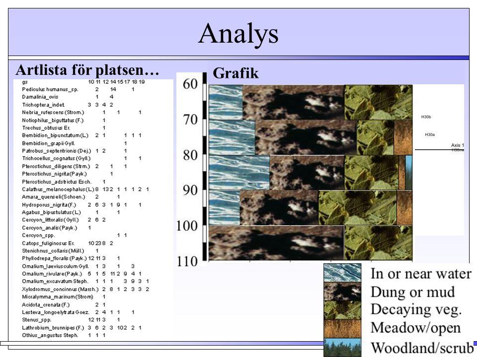 Analys Artlista för platsen… Grafik