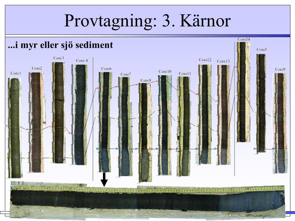 Provtagning: 3. Kärnor ...i myr eller sjö sediment