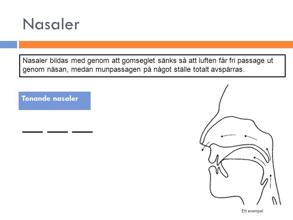 Nasaler __ __ __ Tonande nasaler