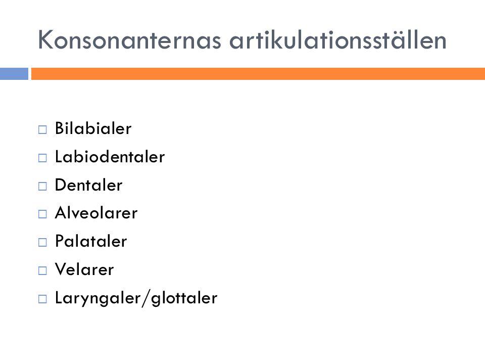 Konsonanternas artikulationsställen