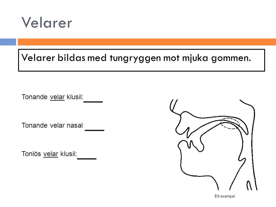 Velarer Velarer bildas med tungryggen mot mjuka gommen.