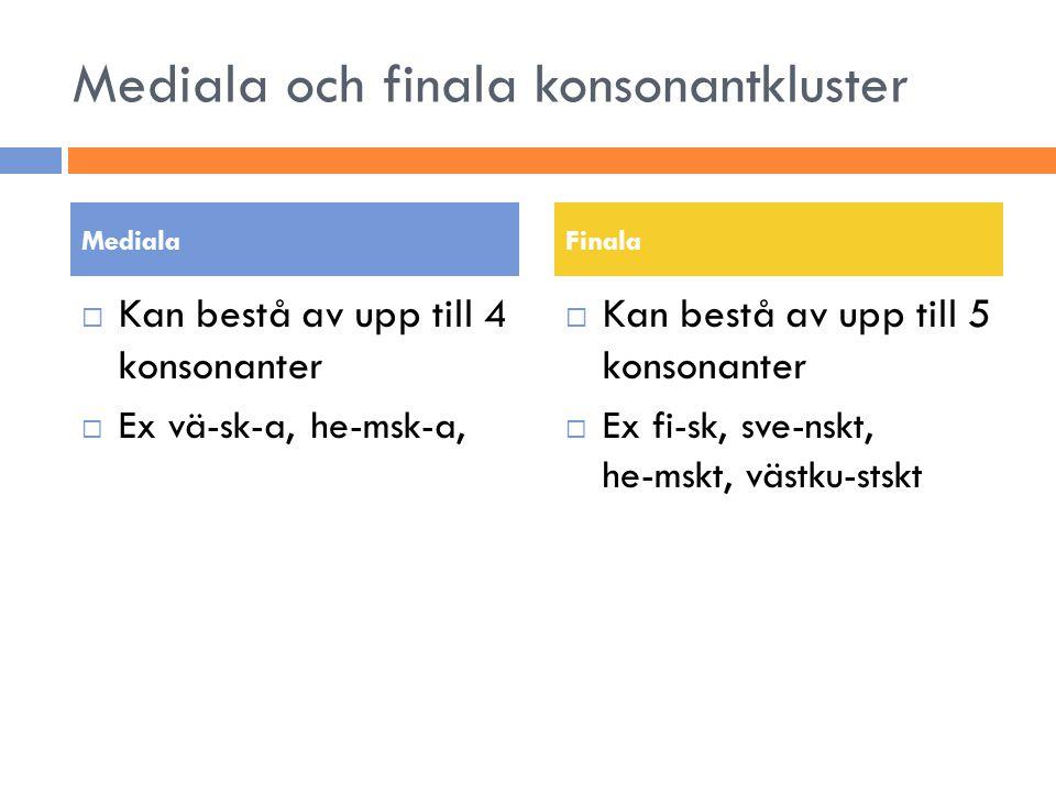 Mediala och finala konsonantkluster
