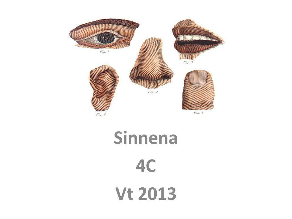 Sinnena 4C Vt 2013