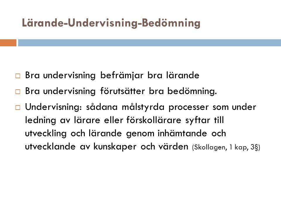 Lärande-Undervisning-Bedömning