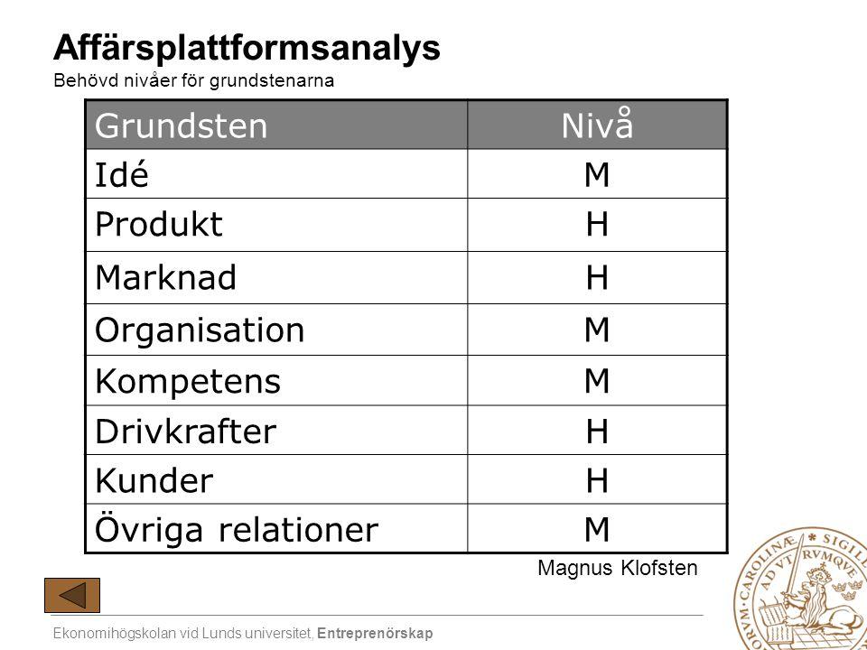 Affärsplattformsanalys Behövd nivåer för grundstenarna