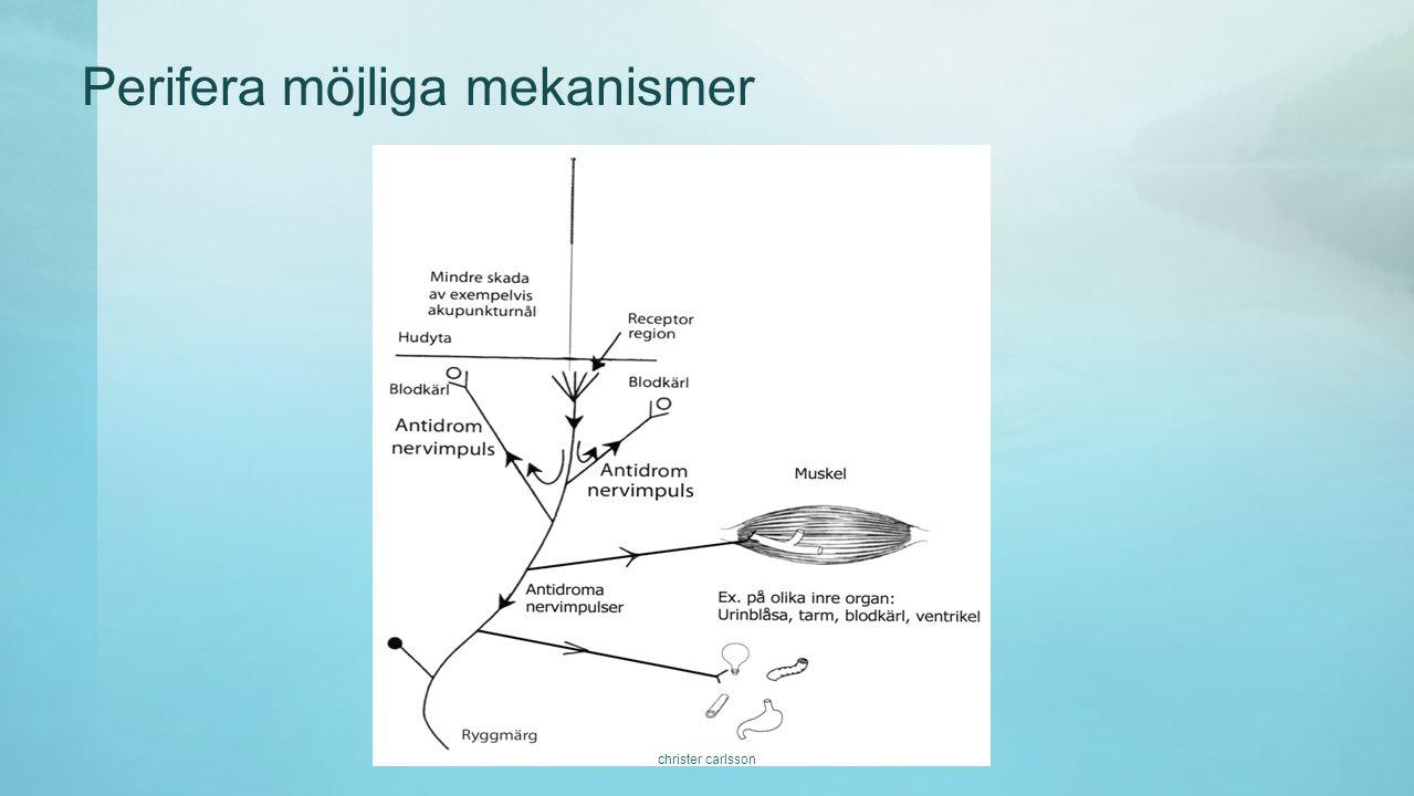 Perifera möjliga mekanismer