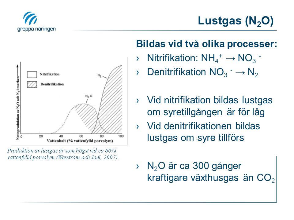Lustgas (N2O) Bildas vid två olika processer:
