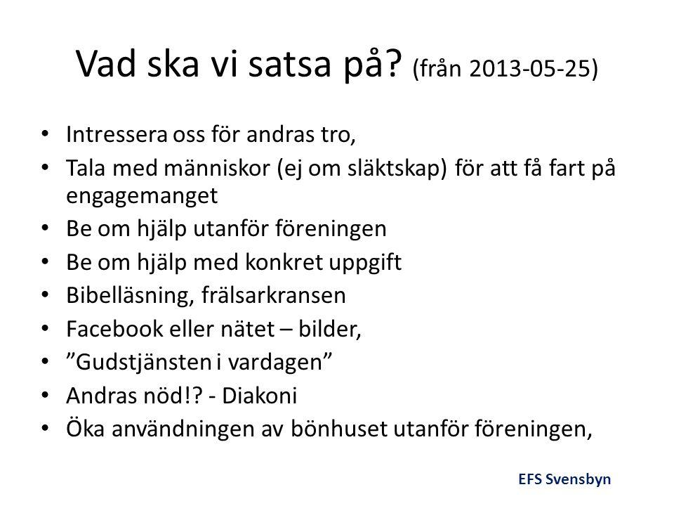 Vad ska vi satsa på (från 2013-05-25)