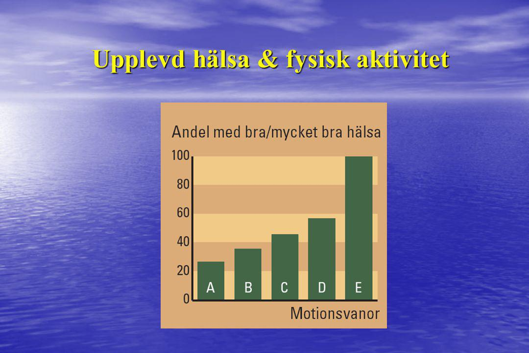 Upplevd hälsa & fysisk aktivitet