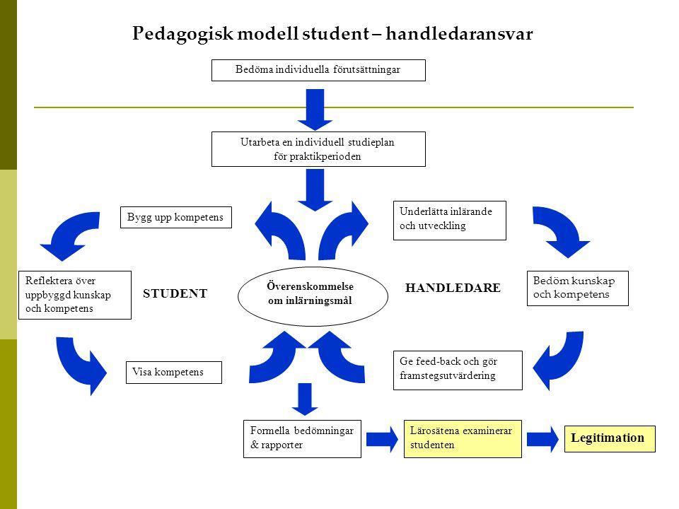 Pedagogisk modell student – handledaransvar