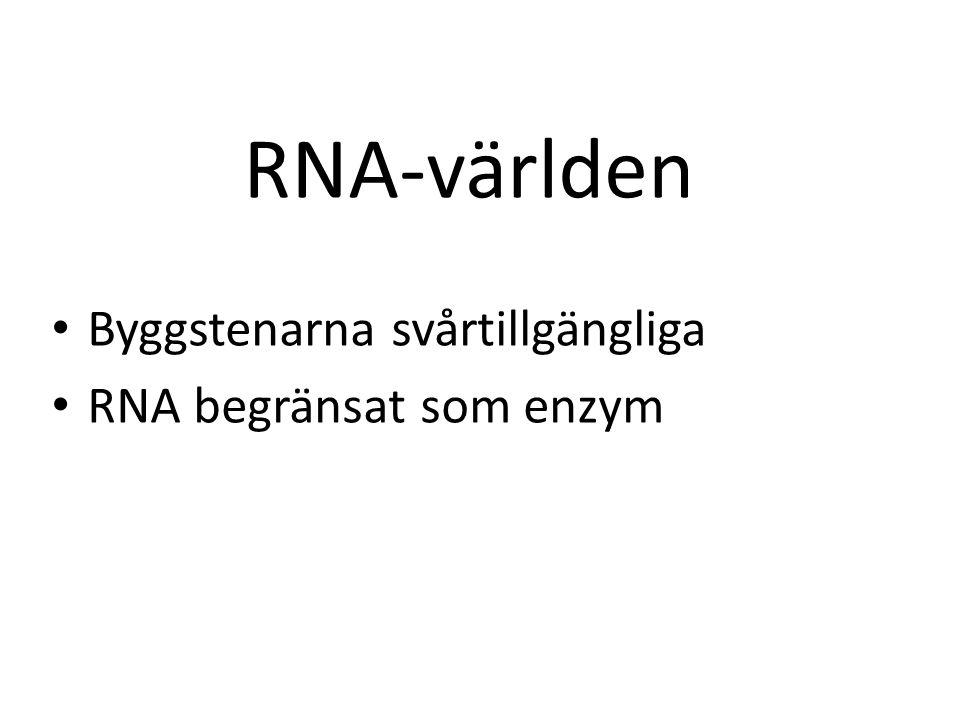 Byggstenarna svårtillgängliga RNA begränsat som enzym