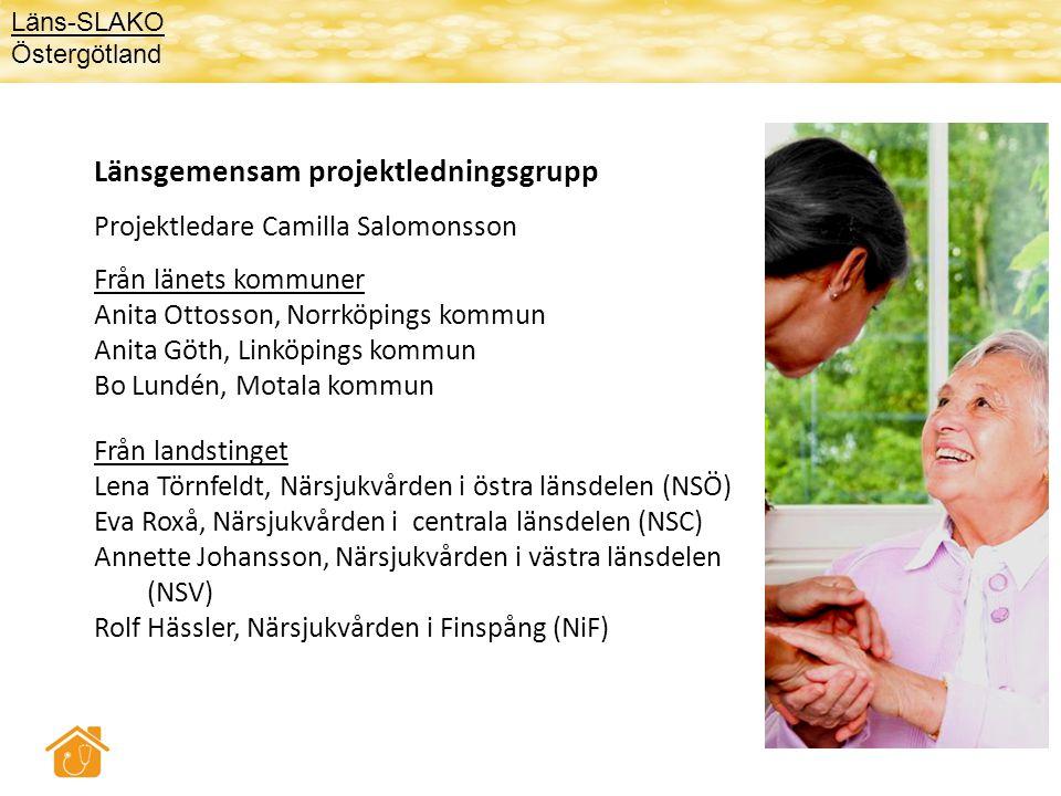 Länsgemensam projektledningsgrupp