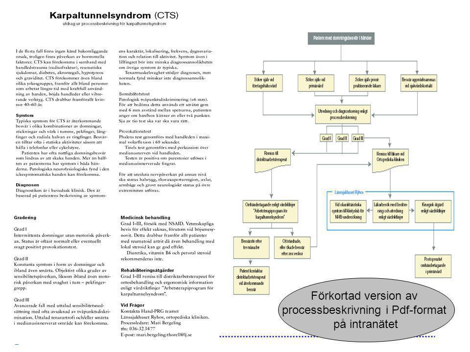 processbeskrivning i Pdf-format