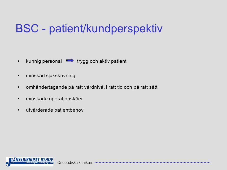 BSC - patient/kundperspektiv