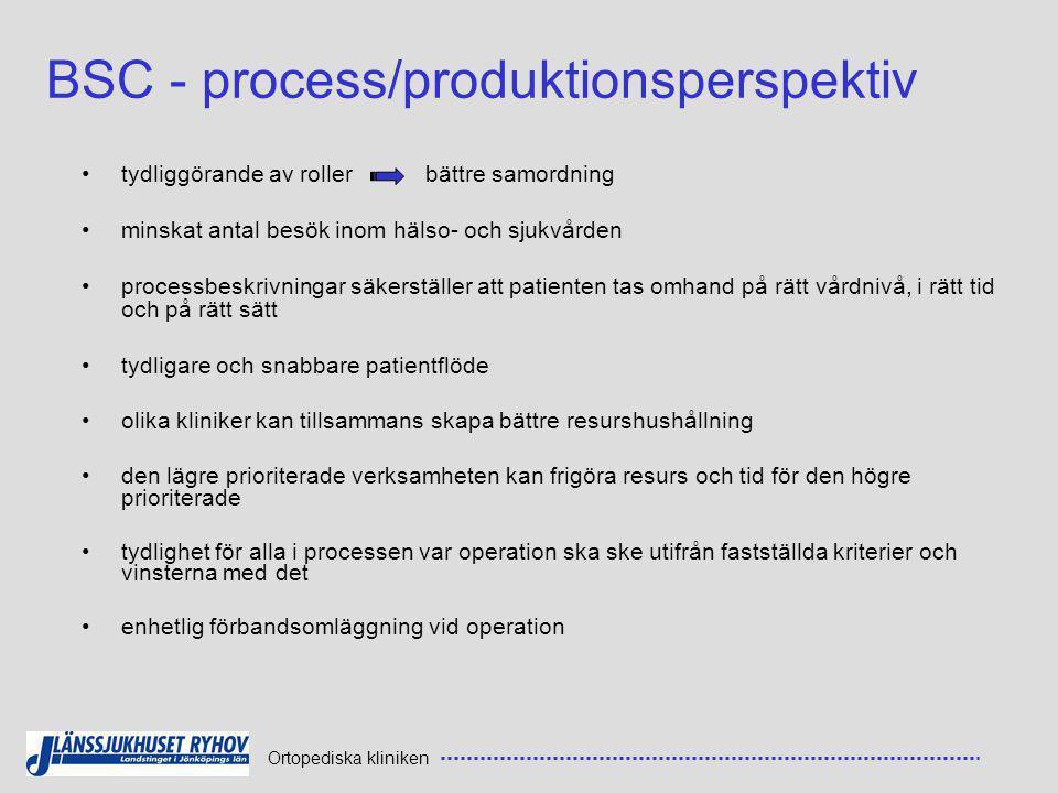 BSC - process/produktionsperspektiv
