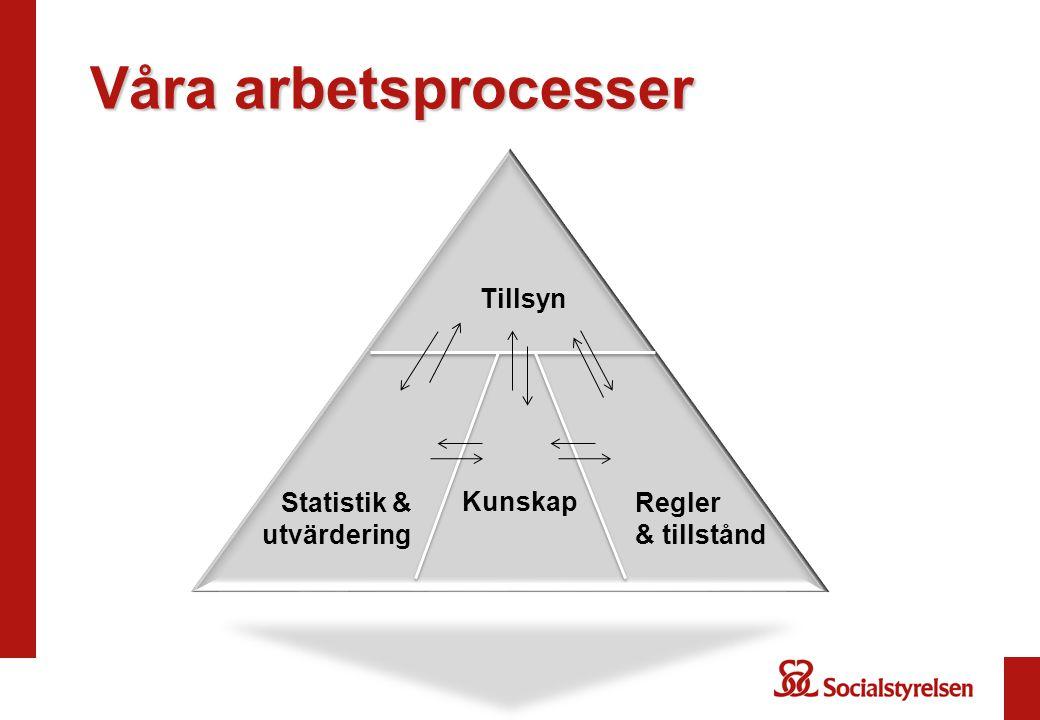 Våra arbetsprocesser Tillsyn Statistik & utvärdering Kunskap