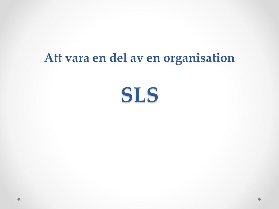 Att vara en del av en organisation