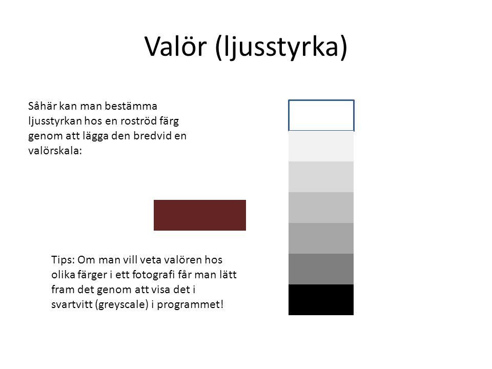 Valör (ljusstyrka) Såhär kan man bestämma ljusstyrkan hos en roströd färg genom att lägga den bredvid en valörskala: