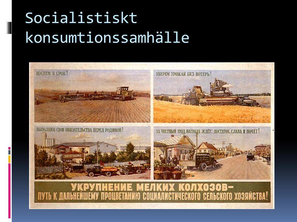 Socialistiskt konsumtionssamhälle