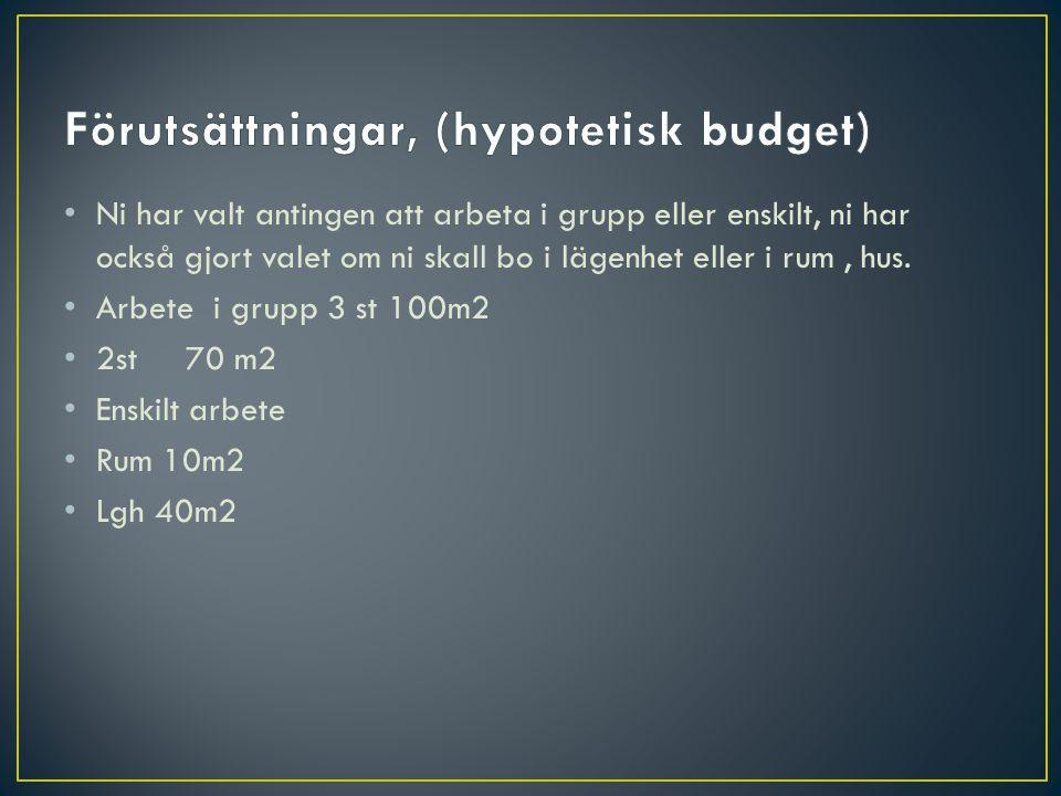 Förutsättningar, (hypotetisk budget)