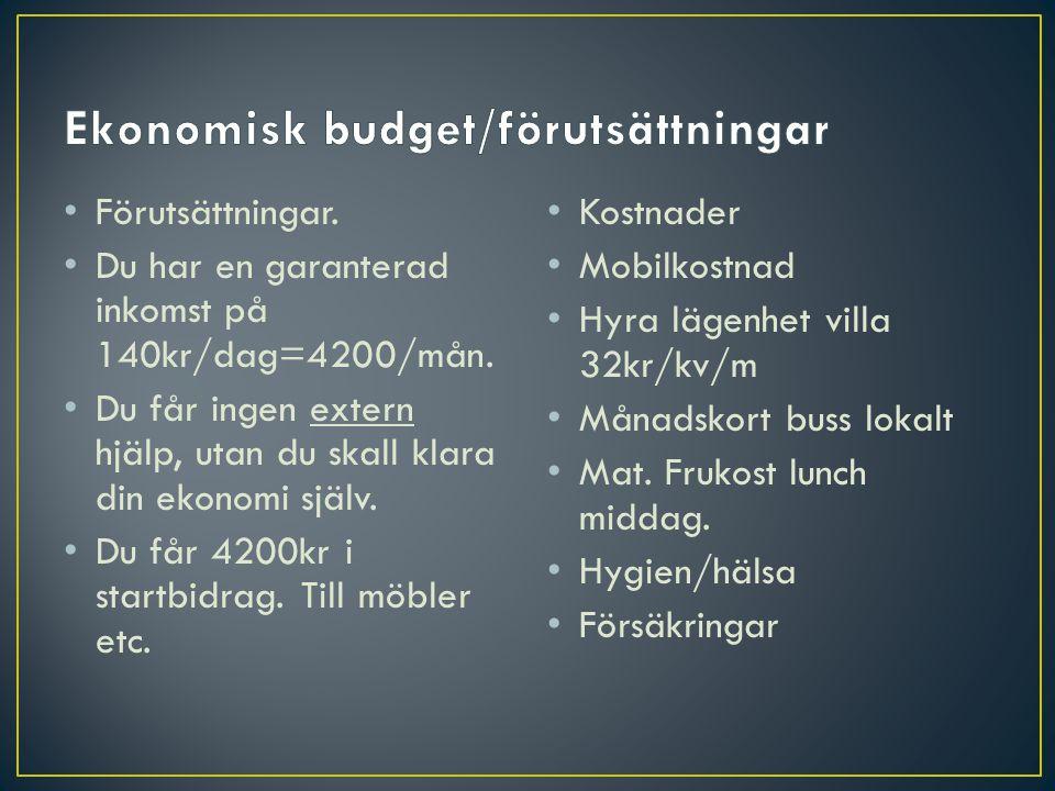 Ekonomisk budget/förutsättningar