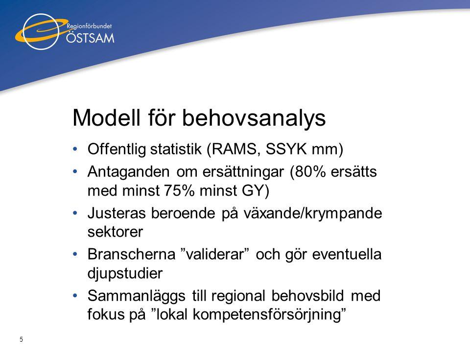 Modell för behovsanalys