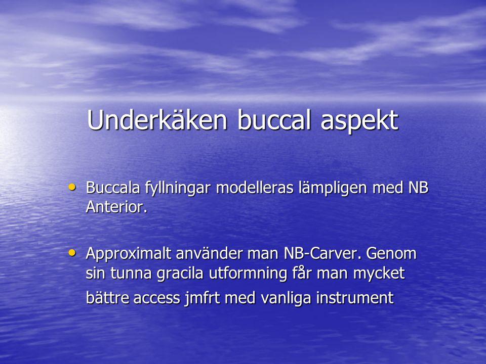 Underkäken buccal aspekt