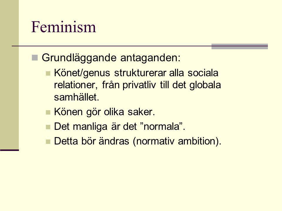 Feminism Grundläggande antaganden: