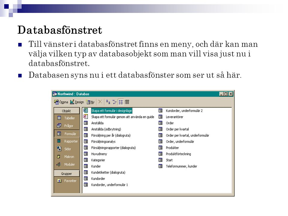 Databasfönstret
