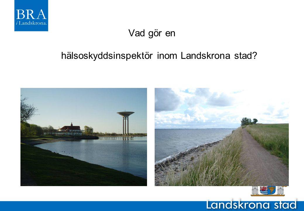 Vad gör en hälsoskyddsinspektör inom Landskrona stad