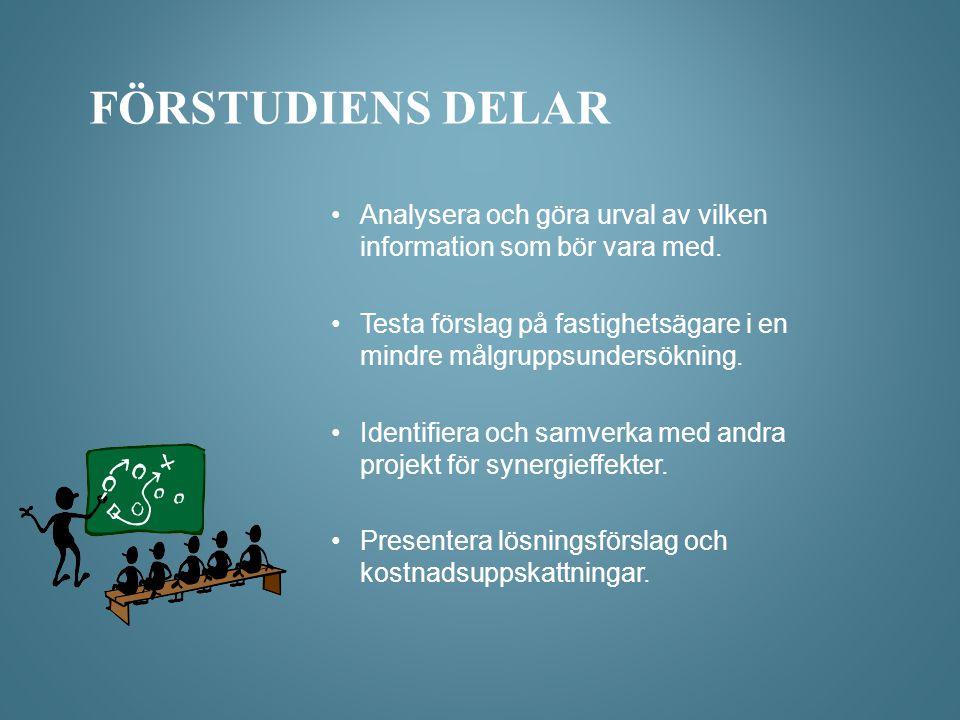 Förstudiens delar Analysera och göra urval av vilken information som bör vara med.