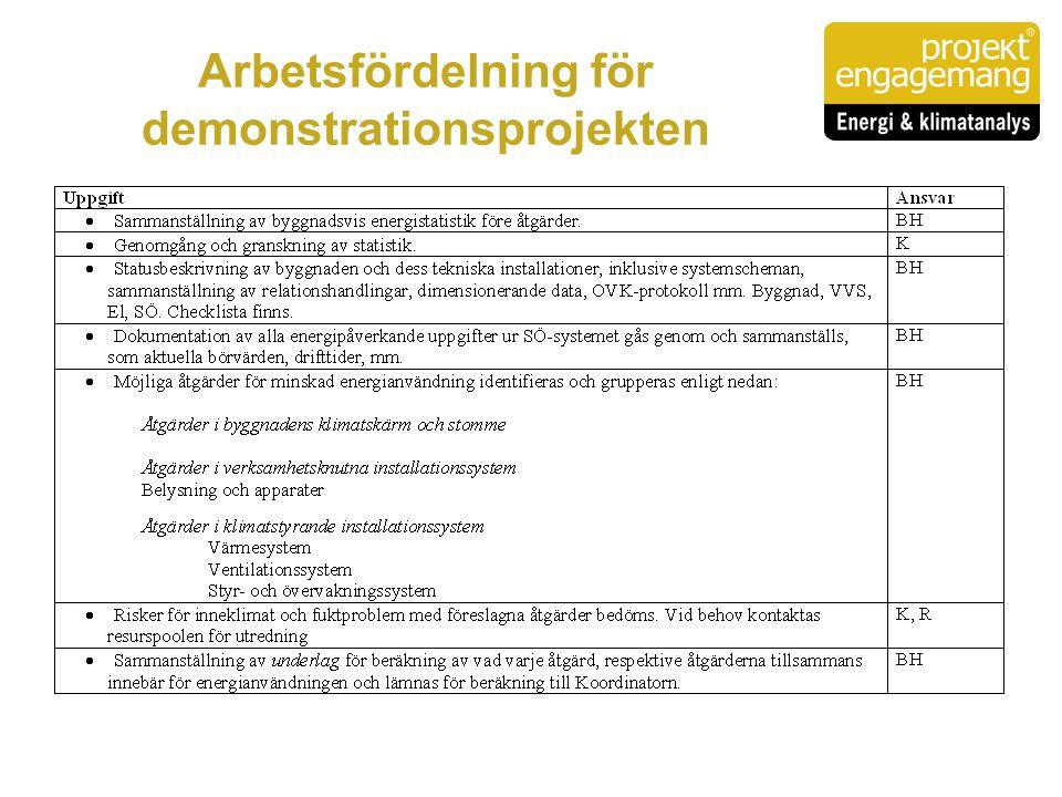 Arbetsfördelning för demonstrationsprojekten